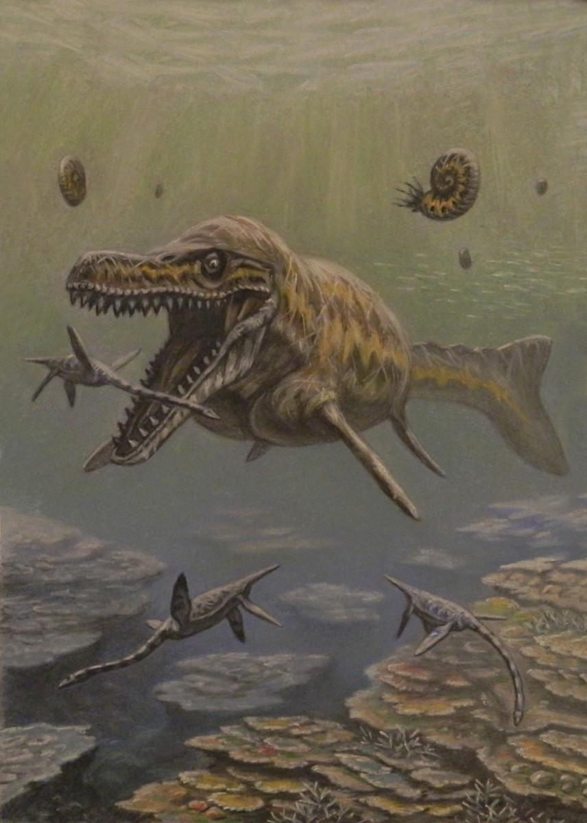 Sokoto's giant lizards